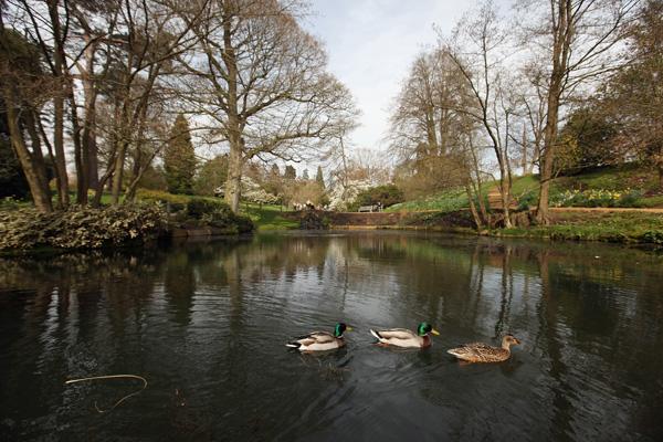 Уэйкхерст Плейс,Англия. Фото: Oli Scarff/Getty Images