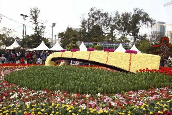 Виставка квітів. Гонконг. Березень 2011 р. Фото: The Epoch Times