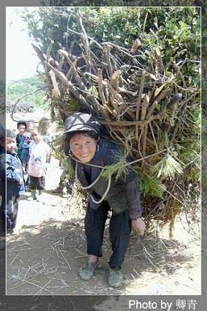 Женщина несет на спине хворост. Фото: Цин Цин/Великая Эпоха