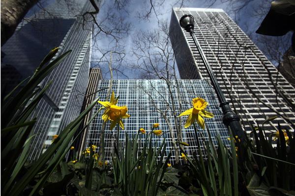 Брайант-парк, Нью-Йорк. Фото: Mario Tama / Getty Images