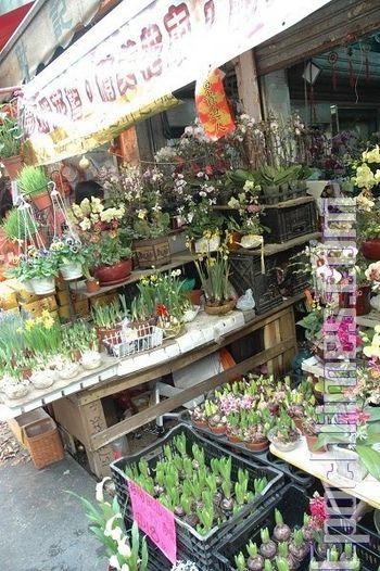Прилавки для продуктів в магазині гонконзького району Дунмень напередодні Нового Року перетворилися на прилавки для продажу новорічних квітів. Фото: Пан Цзінчао/Велика Епоха