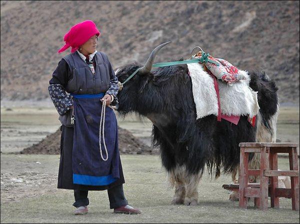 Жінка Тибету. Фото: spasi-i-sohrani.com