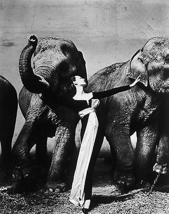 1955 г. Фото с secretchina.com