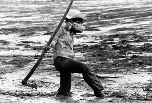 Крестьянин обрабатывает землю. Провинция Гуандун. 1996 год. Фото: Sun Bujun