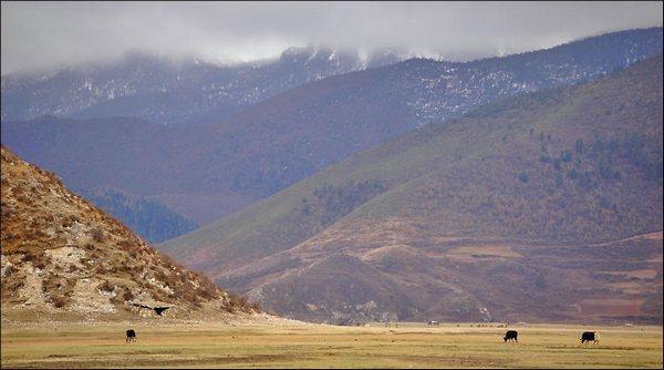 Энергия Тибета. Фото: spasi-i-sohrani.com