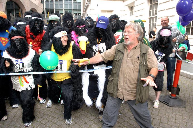 Телеведущий Билл Одди открывает «Большой забег горилл» в Лондоне. Фото: greatgorillarun.org