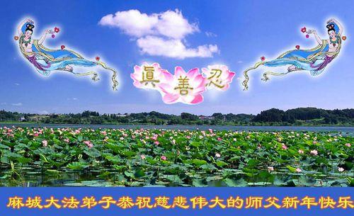 Поздравление от последователей «Фалуньгун» г. Мачен провинции Хубэй. Фото с minghui.org