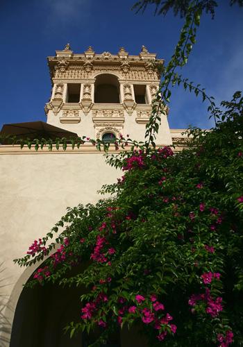 Сан-Диего, Бальбоа парк. Фото: Stephen Dunn/Getty Images