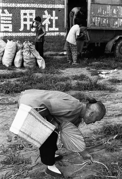 Пожилая женщина подбирает овощи, оставшиеся после базара. Провинция Хэнань. 1997 год. Фото: Zhang Huibin