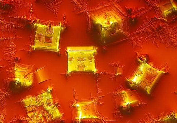 Кристаллизованный соевый соус (увеличение в 16 раз). Фото сделано в Пекинском университете языков и культуры