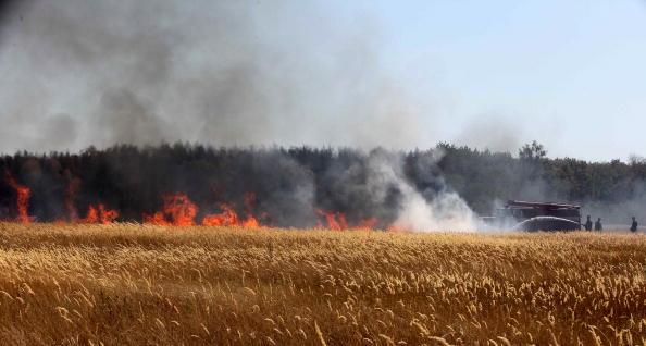Пожарные тушат пожар на окраине Воронежа 31 июля 2010 года. Фото: Alexey SAZONOV/AFP/Getty Images