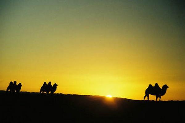 Восход солнца в пустыне Гоби. Фото: Bernd Kregel