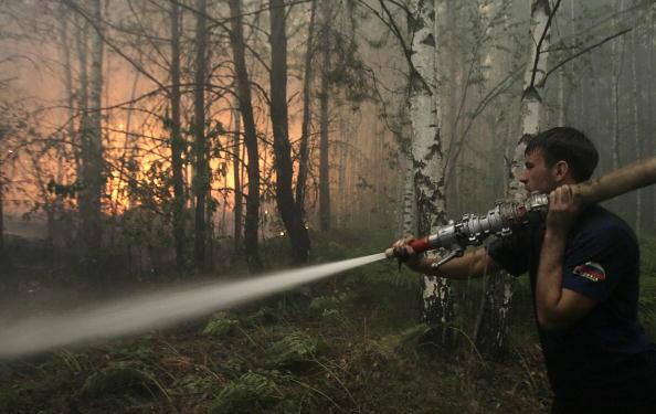 Пожарник тушит торфяник в лесу около деревни Рязановка 29 июля 2010 года. Фото: ARTYOM KOROTAYEV/AFP/Getty Images