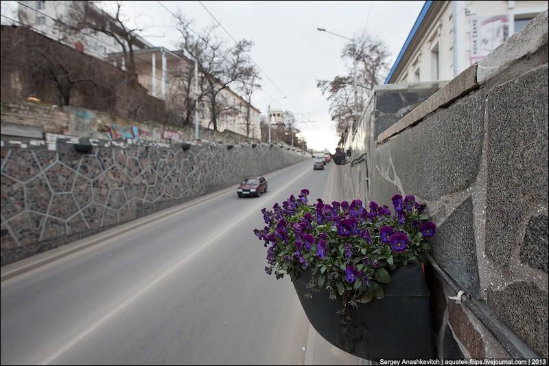 В Крыму цветут абрикосы, миндаль и розы. Фото: aquatek-filips.livejournal.com