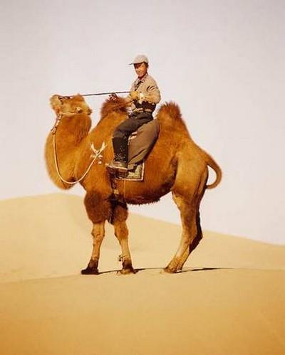 Через пустыню. Фото: Bernd Kregel