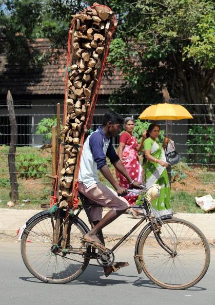 Представитель этнического меньшинство в Шри-Ланке транспортирует дрова на велосипеде. 25 января 2010. Фото: Индранил Муккерджи/Getty Images/