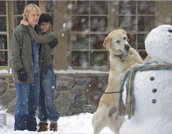 Кадр из фильма «Марли и я». Фото с сайта vokrug.tv