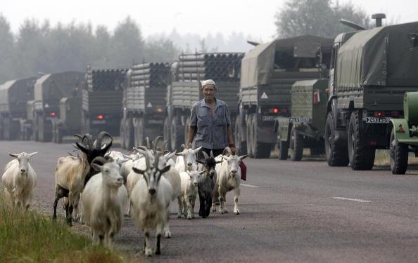 Пастух идет со стадом коз возле военной техники пригнанной для борьбы с лесными пожарами. Фото: ARTYOM KOROTAYEV/AFP/Getty Images