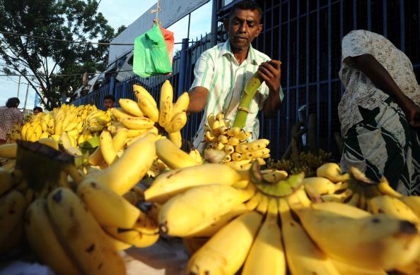 Житель Шри-Ланки продает бананы на воскресном рынке в Коломбо. Фото: LAKRUWAN WANNIARACHCHI/AFP/Getty Images