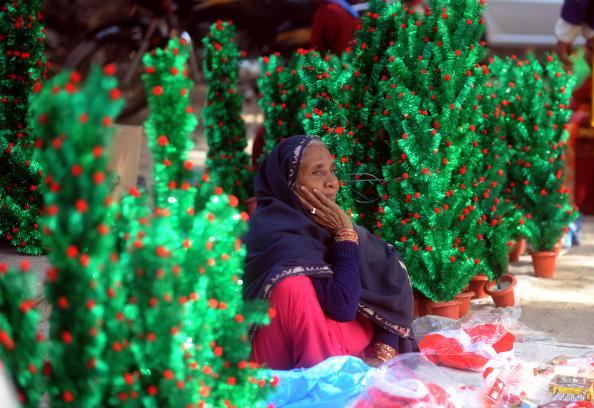 Продавец надеется, что все его елки найдут своих хозяев. Индия. Фото:RAVEENDRAN/AFP/Getty Images