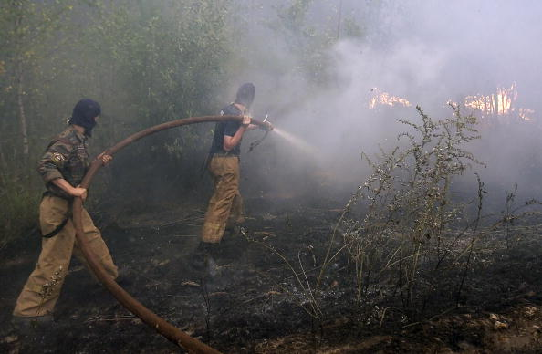 Пожарники тушат торфяник в лесу около деревни Рязановка 29 июля 2010 года. Фото: ARTYOM KOROTAYEV/AFP/Getty Images