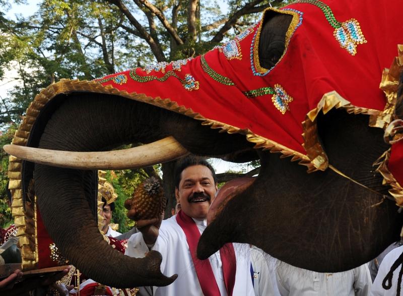 Канди, Шри-Ланка, 2 августа. Президент Махинда Раджапаксе угощает ананасом слона, наряженного для участия в ежегодном буддийском фестивале. Фото: Ishara S.KODIKARA/AFP/GettyImages