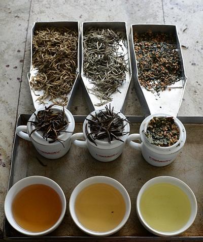 Ещё один символ Японии — зелёный чай. Фото: Ishara S.KODIKARA/AFP/Getty Images