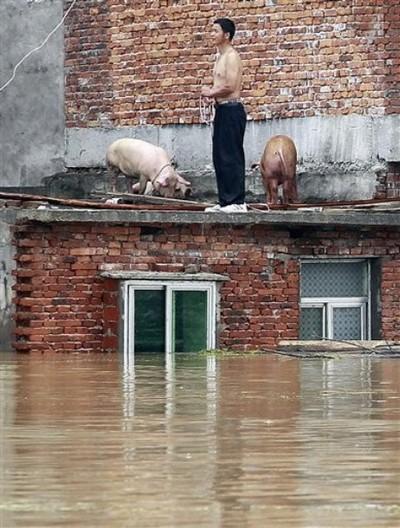 Наводнения в Китае. Июнь 2010 год. Фото: AP