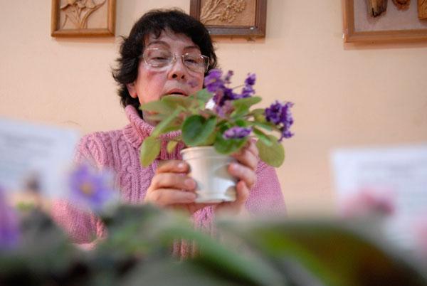 Выставка комнатных фиалок (сенполий) открылась в Киеве 11 февраля 2010 года. Фото Владимир Бородин. Фото: Владимир Бородин/The Epoch Times
