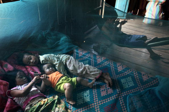Борьба с малярией (Falciparum malaria).в Камбодже. Фото: Paula Bronstein/Getty Images