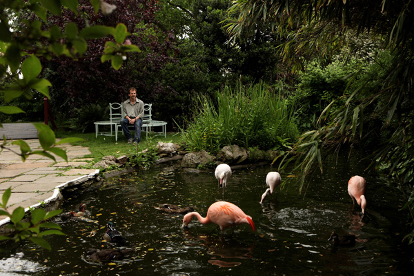 Проект самых больших садов на крыше под названием Roof Garden был составлен ландшафтным дизайнером Ральфом Ханкоком и сочетал различные садовые стили. Фото: Oli Scarff/Getty Images