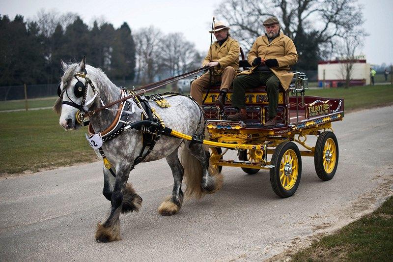 Ардингли, Англия, 1 апреля. Ежегодный парад упряжных лошадей состоялся в пригороде столицы. Фото: Bethany Clarke/Getty Images
