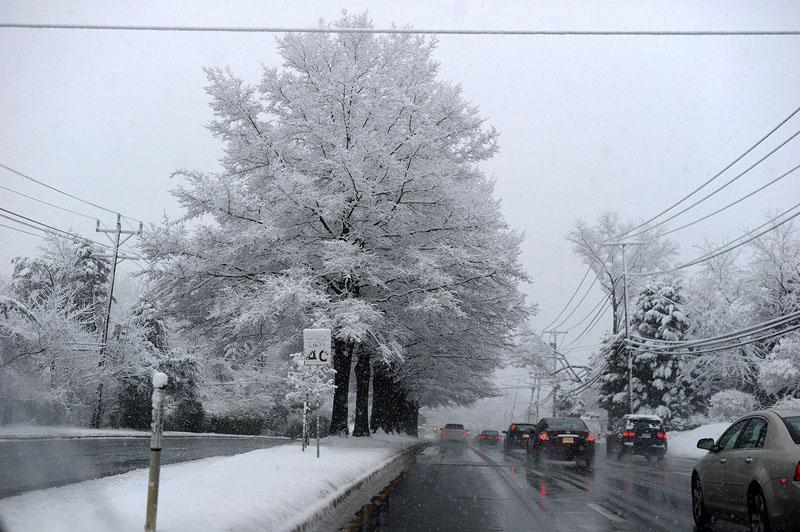 Силвер Спринг, США, 25 марта. Восточное побережье страны оказалось во власти снега с дождём. Фото: JEWEL SAMAD/AFP/Getty Images