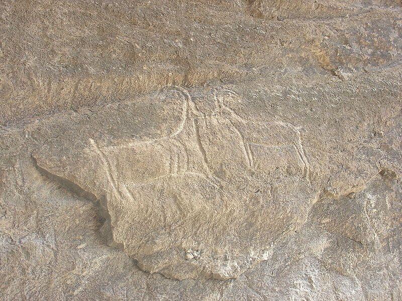 Петроглифы Гобустана. Изображения козлов. III—II тысячелетия до н.э. Фото: KristianEllisWood/commons.wikimedia.org