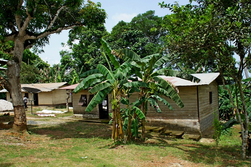 Типичные жилые строения. Фото: Александр Африканец
