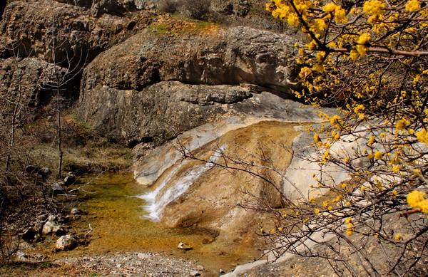 Весенний ручей в горах. Фото: Ирина Рудская/The Epoch Times Украина