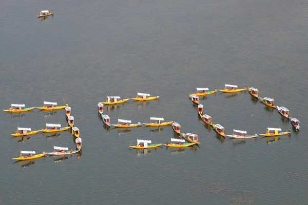 Сринагар, Индия. Фото:AFP PHOTO / CAROLINE PANKERT