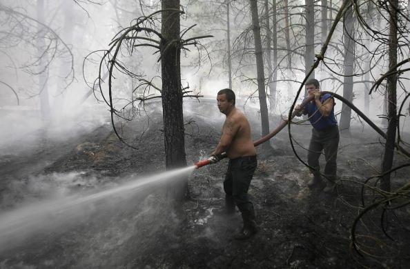 Пожарники тушат остатки пламени среди деревьев в поселке Лесном, находящемся на расстоянии около 130 км от Москвы. Фото: ARTYOM KOROTAYEV/AFP/Getty Images