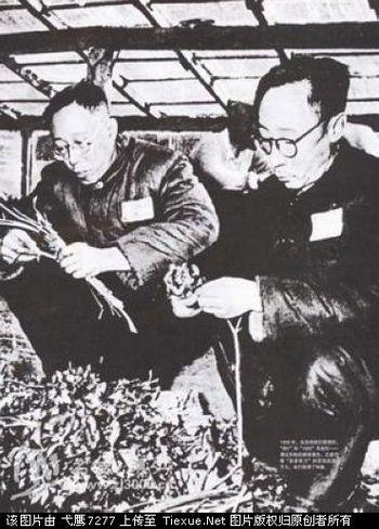 Пу И со своим братом Пу Цзе «исправляются трудом» в тюрьме города Фушун. Фото с secretchina.com