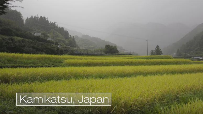 Скриншот с видео: Seeker Stories