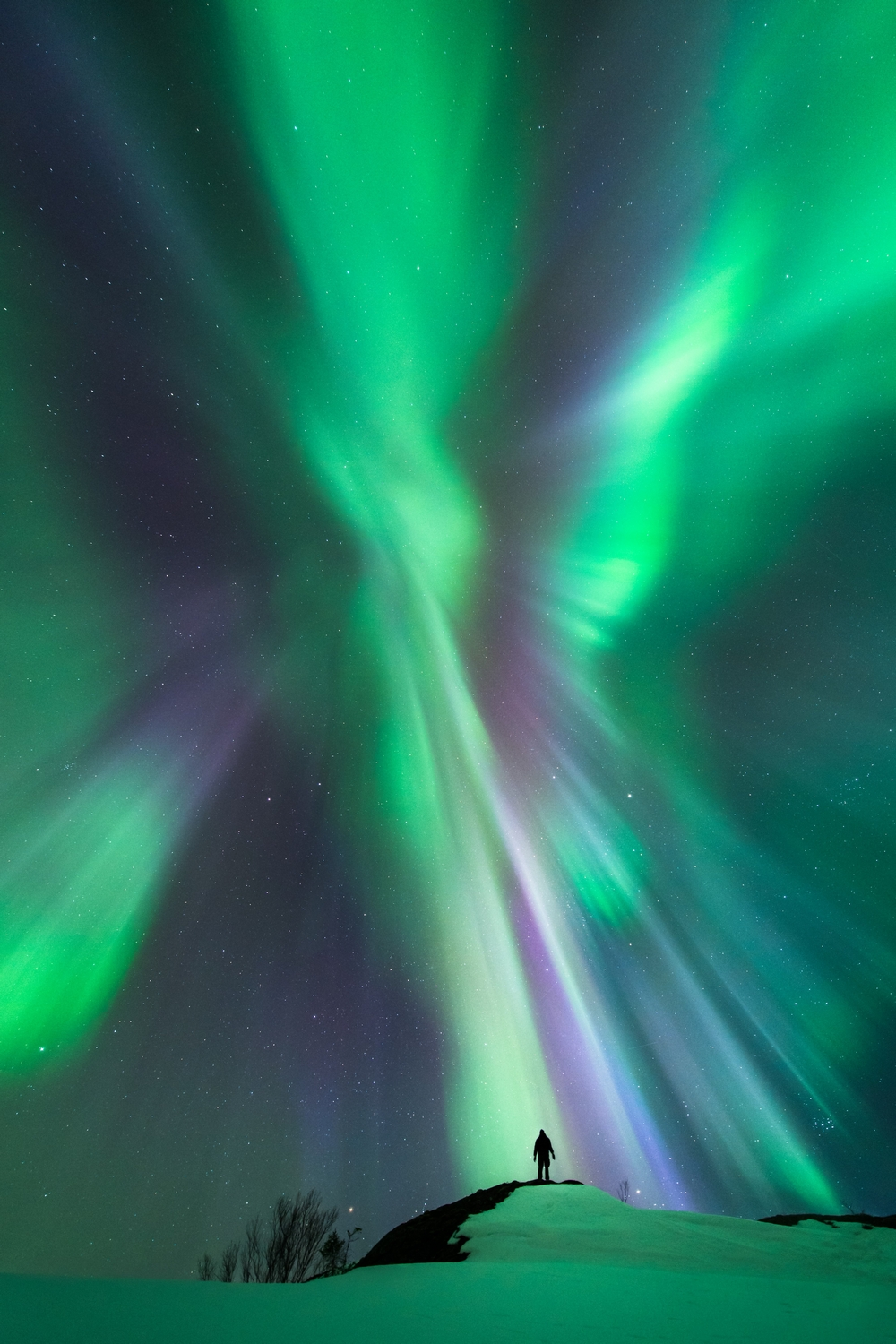 «Interaction». Высокая оценка в номинации «People and Space». Фото: Tommy Eliassen/Royal Observatory Greenwich