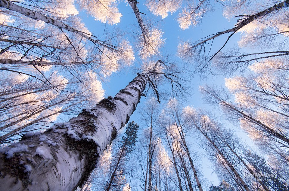 Фото: Джоні Ніемела / joniniemela.com