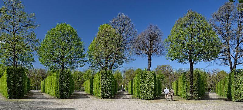 14место. Боскет «Веер» (Der Fächer) в садах дворца Шенбрунн, Вена, Австрия. Автор фото — Herzi Pinki, лицензия CC-BY-SA-4.0