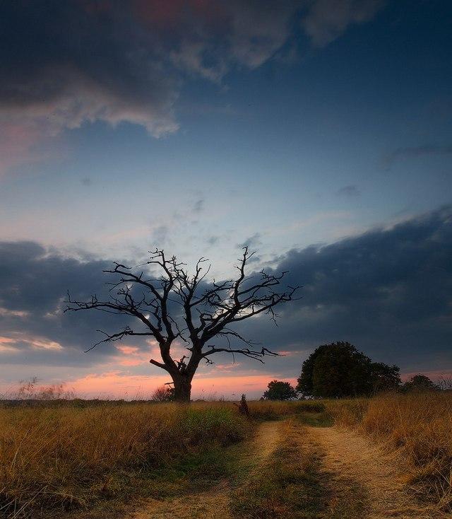Осень на Немане. Фото: Алексей Угальников, vk.com/albums3554740