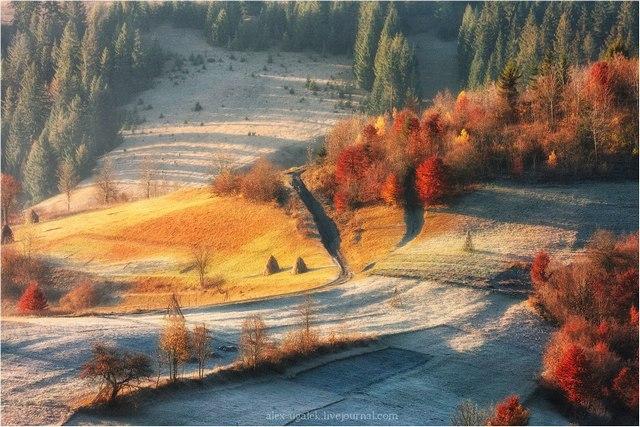 Теплые краски холодного утра. Карпаты. Ноябрь. Солнце только взошло. Фото: Алексей Угальников, vk.com/albums3554740