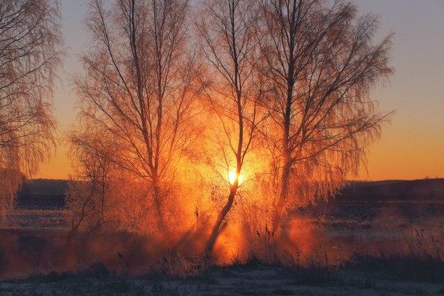 Рождественское утро. Беларусь. Река Свислочь. Фото: Алексей Угальников, vk.com/albums3554740
