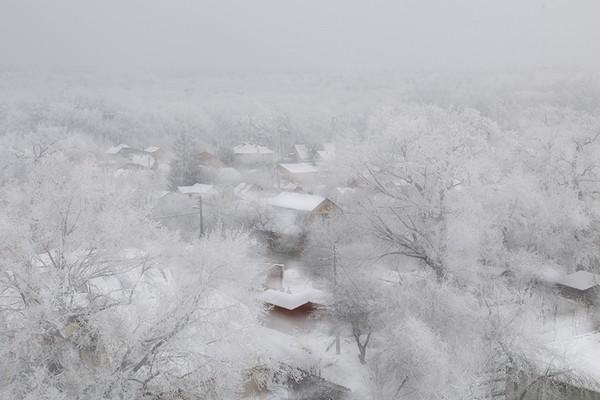 Зима, Киев. Фото: EpochTimes.com.ua