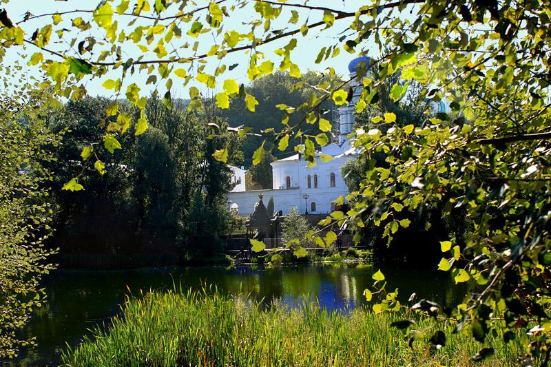 Крізь зелень дерев. Фото: Валерія Мірошко