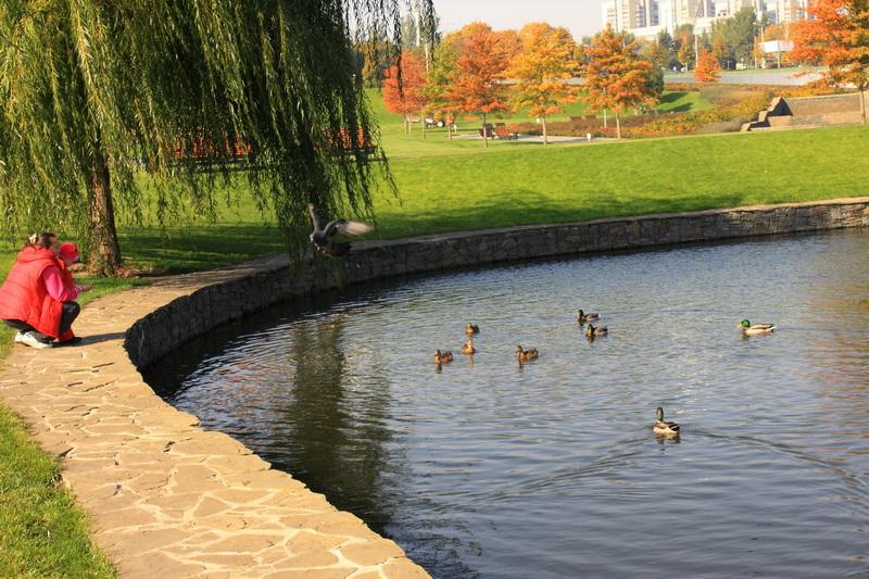 Осенний день в городе. Фото: Ирина Рудская