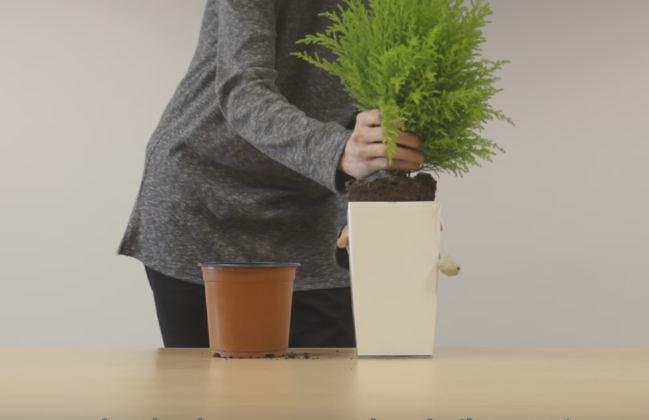Кадр из видео: Arkyne Tech/youtube.com